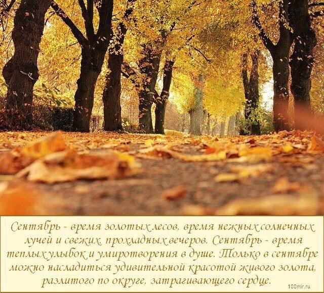 сентябрь, время золотых лесов